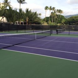 Purple Tennis Court with Pickleball Lines